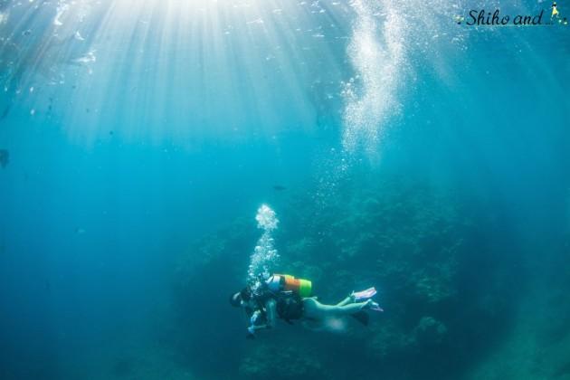 3_tide_bluehole_2_diving_13
