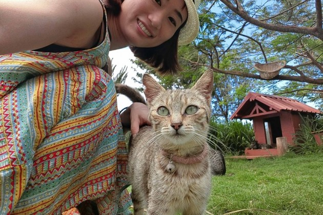 Hawaii_Lanai_CAT_04