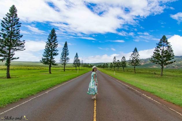 Hawaii_Lanai_activity_03