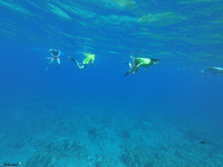 Hawaii_Maui_Molokini_14