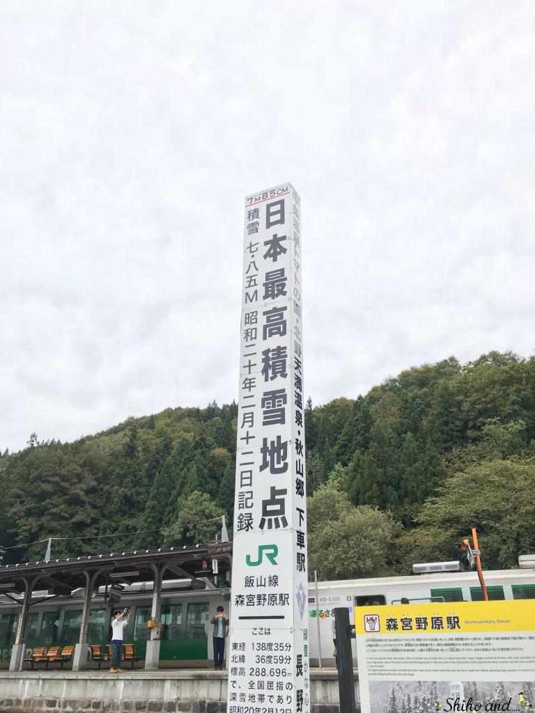 nagano_sakae2-1
