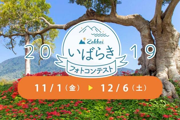 banner_top-min